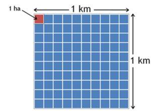 hectareas en kilometros