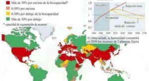 hectárea global