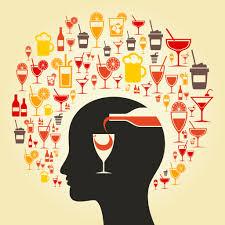 bebidas alcohólicas en el organismo
