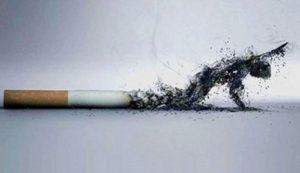 El cigarrillo o tabaco