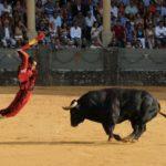 Cuánto dura una corrida de toros