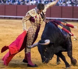 El toro le colocan tres pares de banderillas