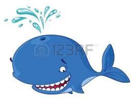 Comportamiento de las ballenas